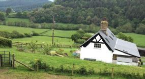Dog Friendly B and B Ludlow | Roseheart Kingdom B&B Shropshire